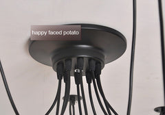 10 head ceiling rose in black