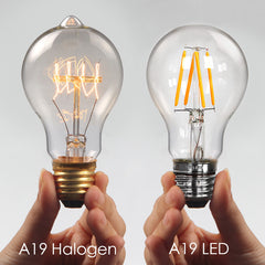 A19 halogen and LED bulb