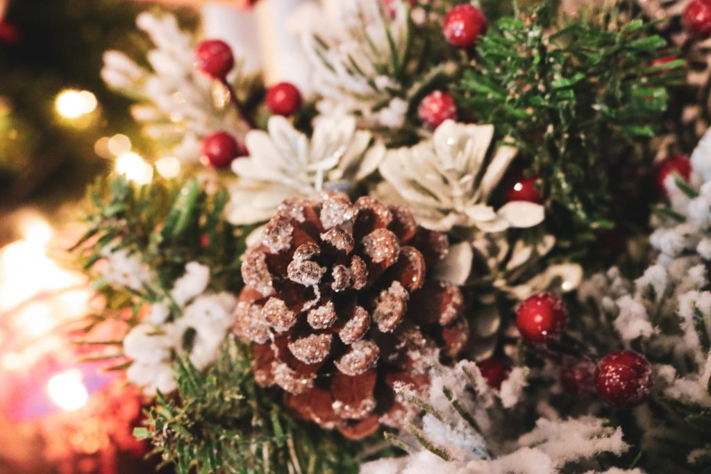 A frosted pinecone perfect for a Christmas tree