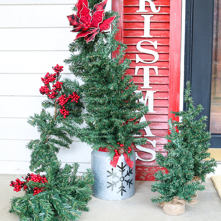 small christmas trees outdoors