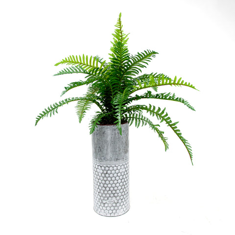 "40"" River Fern in Tall Metal"