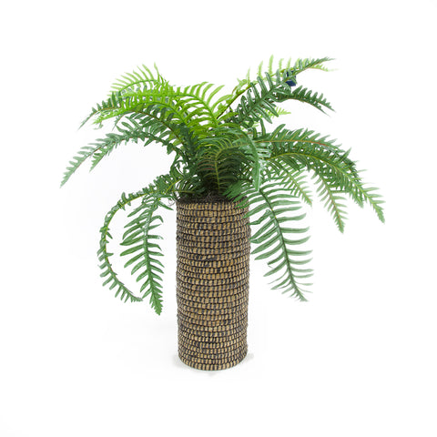 "42"" River Fern in Tall Basket"