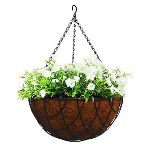 Hanging Planter with Coconut Liner (2 sizes)
