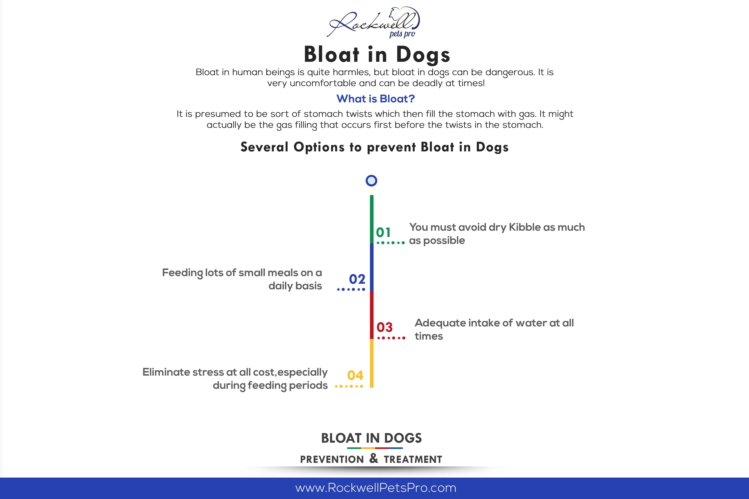 Bloat in Dogs