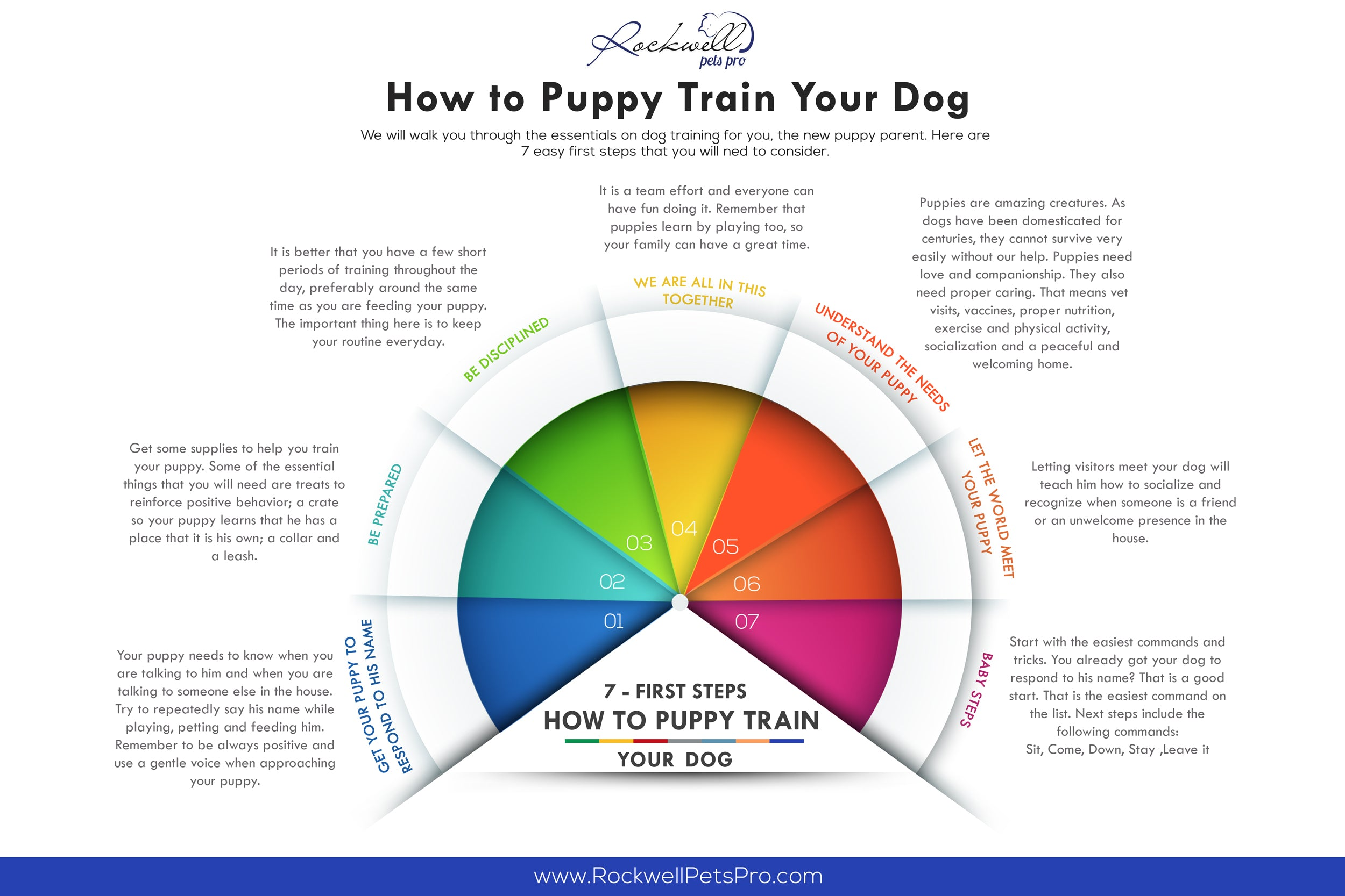 How To Puppy Train Your Dog: 7 First Steps