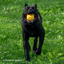 Load image into Gallery viewer, Dog Ball Chew Toy