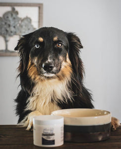 Natural Dog Bone Broth