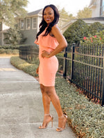Mickaa In Your Dreams Coral Fitted Dress