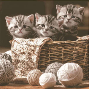 Napkins - Luncheon </br>Kittens