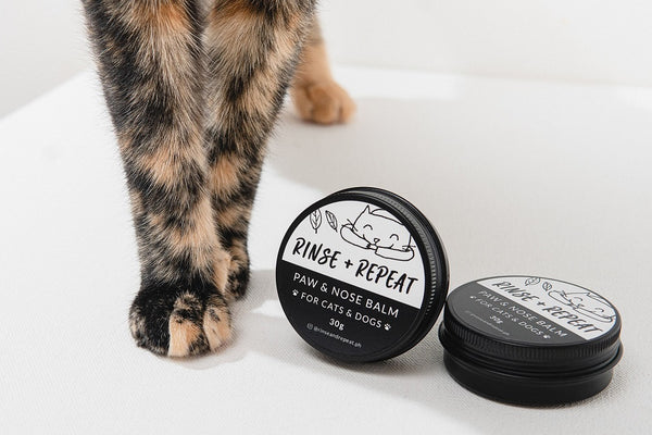Paw Balm for Cats & Dogs