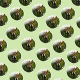 Bassin and Brown Dog in The Long Grass Cufflinks - Green/Brown