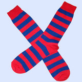 Bassin and Brown Red/Royal Blue Hooped Stripe Cotton Socks