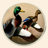 Bassin and Brown Mallard Ducks Jacket Lapel Pin - Brown, White and Green