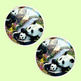 Bassin and Brown Panda Bears Cufflnks -  Black/White