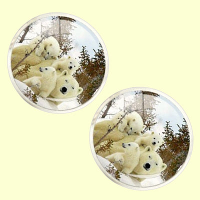 Bassin and Brown Polar Bear Cufflnks - White