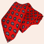 Bassin and Brown Teardrop Paisley Silk Pocket Square - Red