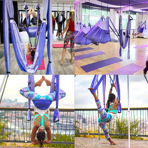 Aerial Silk Yoga Swing Set, Purple