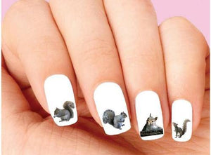 Squirrel Assorted Waterslide Nail Decals
