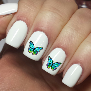 Teal Aqua Butterfly - Nail art Waterslide Decals - Nails Creations