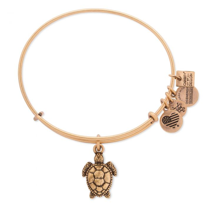 Alex and Ani - Charity By Design: Turtle Bracelet - Rafaelian Gold - Artsy Abode