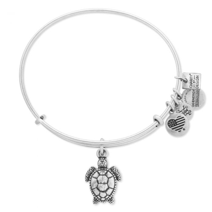 Alex and Ani - Charity By Design: Turtle Bracelet - Rafaelian Silver - Artsy Abode