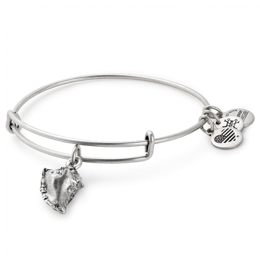 Alex and Ani - Conch Shell Bracelet - Rafaelian Silver - Artsy Abode