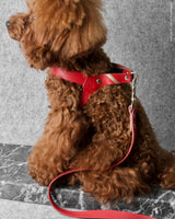One Click® Harness - Fiery Red