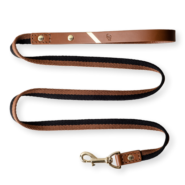 Stylish Me Leash - Earth