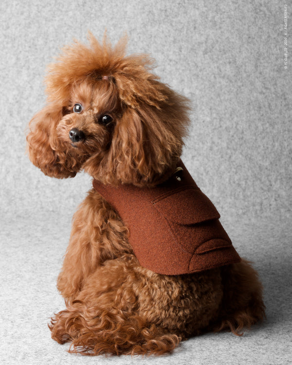 Wrap Up Jacket Harness - Rusty