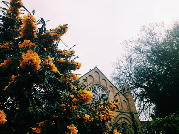 church in west london, with blooming orange flowers to the left