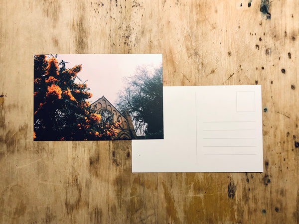 CALM Postcard Pack