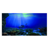 Poster d'aquarium : Grand fond marin