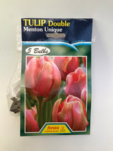 Load image into Gallery viewer, Tulip Bulbs