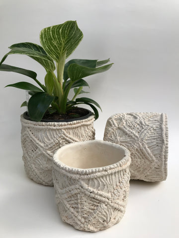 Crochet look planters - (Indoor)