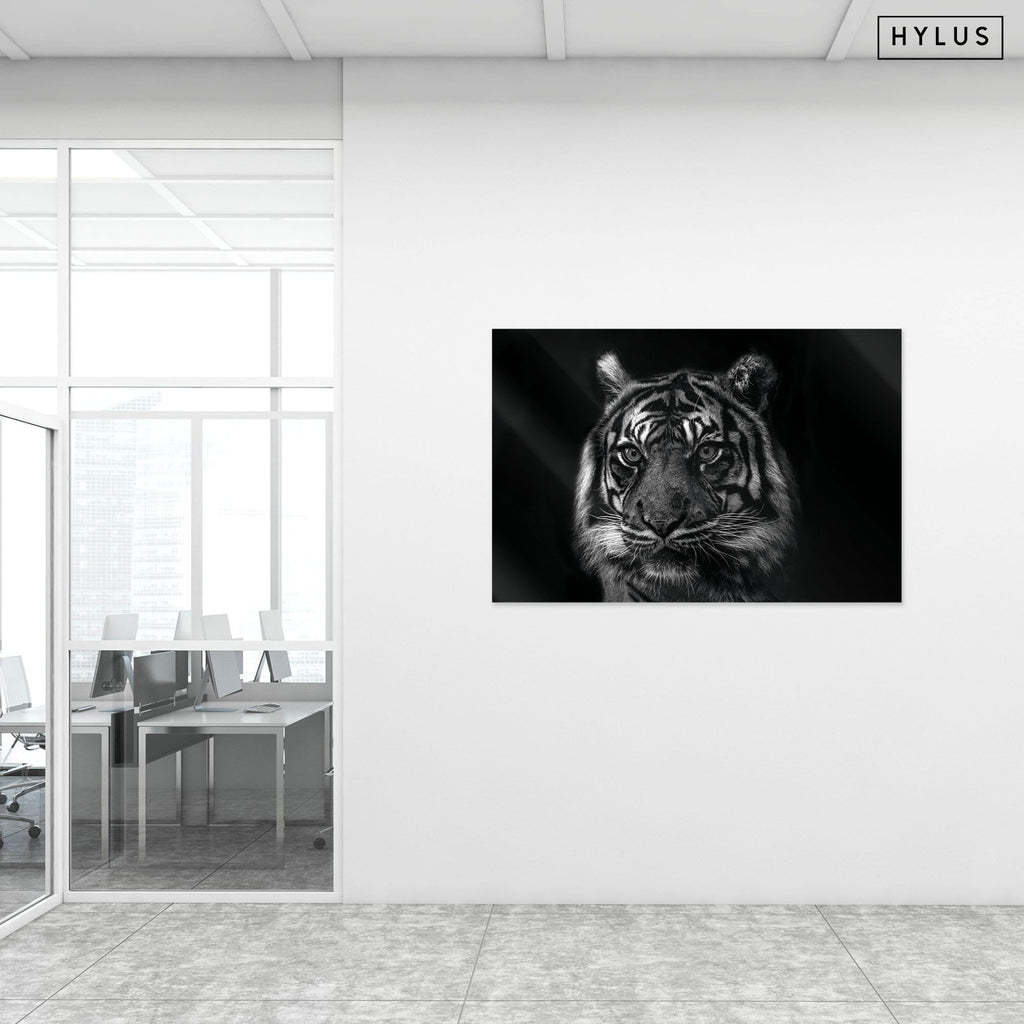 """Tiger Eyes"" - Glass Print - HYLUS Acrylic Glass Art - Skateboards, Surfboards & Glass Prints Wall Decor for your Home."