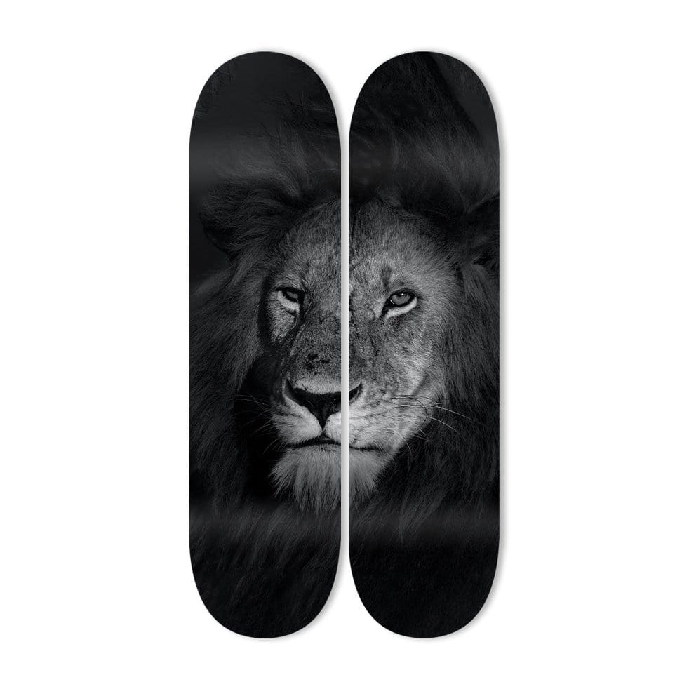 """Lion Eyes"" - Skateboard - HYLUS Acrylic Glass Art - Skateboards, Surfboards & Glass Prints Wall Decor for your Home."