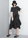 Polka Dot Cropped Pleated Dress