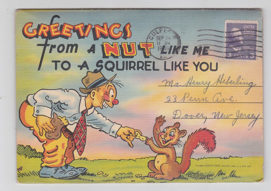 Greetings From A Nut Like Me 1940's Humor Postcard Booklet