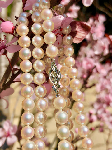 Japanese Akoya Cultured Pearls