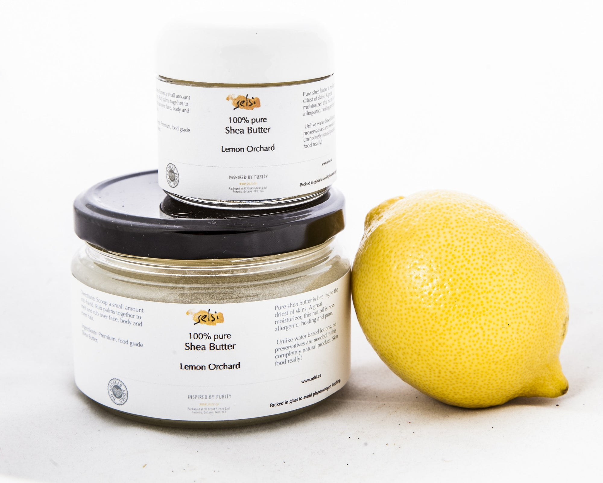Thera Shea - Lemon Orchard