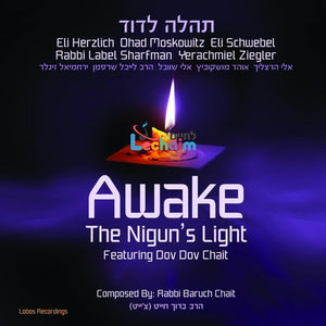 Awake The Nigun's Light <br> תהלה לדוד