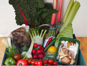 LARGE SEASONAL VEGETABLE BOX