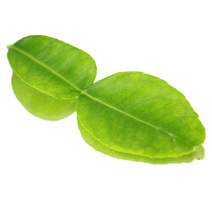 Kaffir Lime Leaves 10G