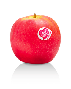 French Pink Lady Apple