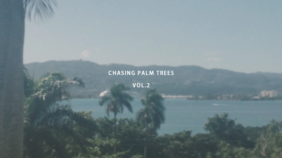 CHASING PALM TREES VOL.2 / JAMAICA
