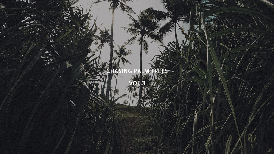 CHASING PALM TREES  VOL.3  / SRI LANKA
