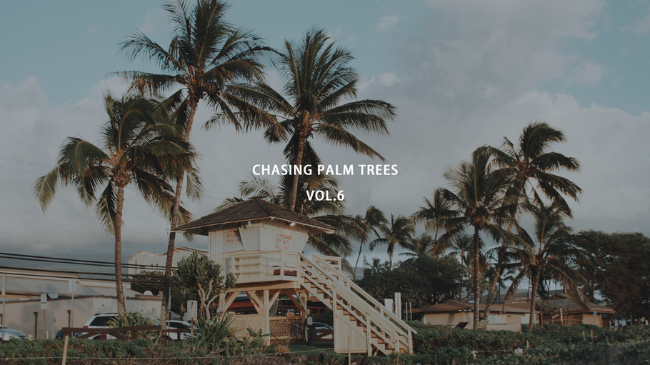 CHASING PALM TREES VOL.6 / MAUI, HI