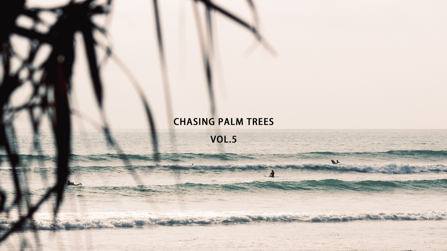 CHASING PALM TREES VOL.5 / SAN ONOFRE, CA