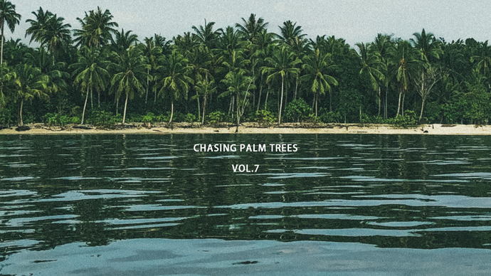 CHASING PALM TREES VOL.7 / MENTAWAI ISLANDS, INDONESIA