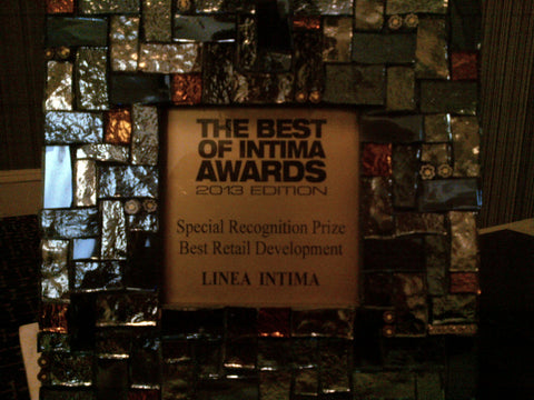 The Best of Intima Awards 2013 Edition - Special Recognition Prize - Best Retail Development - Linea Intima